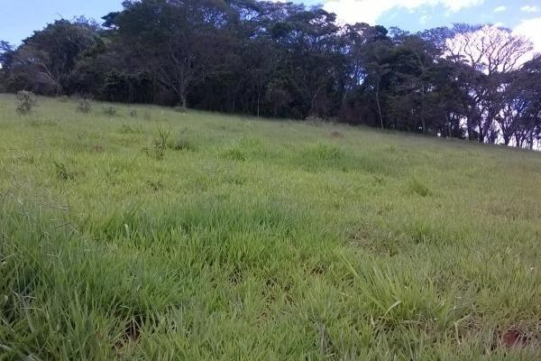 Vendo- Sítio no Sul de Minas com 26 hectares!! - Foto 9