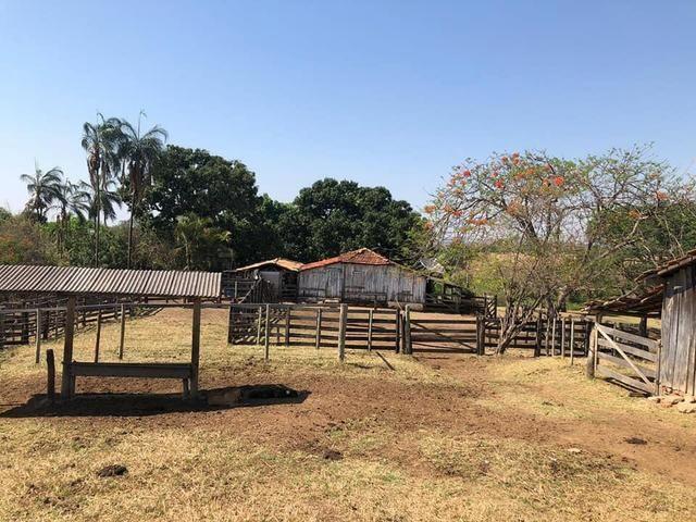 Fazenda a venda em Piracanjuba de 20 alqueires para Pecuária e lavoura - Foto 12