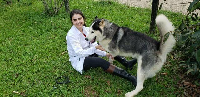 Cuidadora de Animais - Foto 4