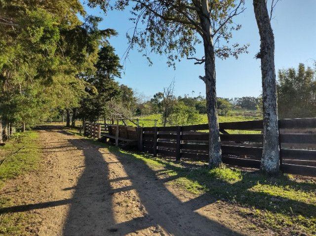 Fazenda na Cascata - 75 ha - Pelotas - RS - Foto 12