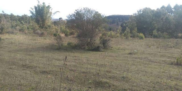 Chácara 3,17 ha -185 mil c/casa Santana do Livramento Rs - Foto 6