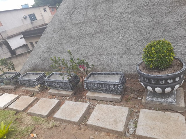 Vasos de plantas - Foto 3