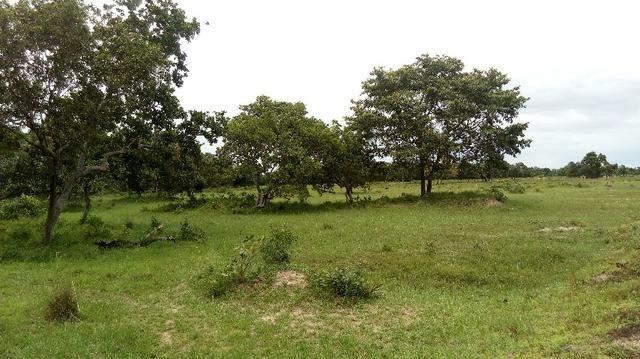 Fazenda 10 km da cidade Cuiaba - pedra 90 - Foto 12