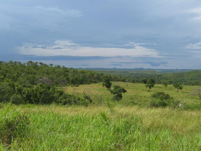 Almas-TO - Fazenda distante de Palmas 210 Km
