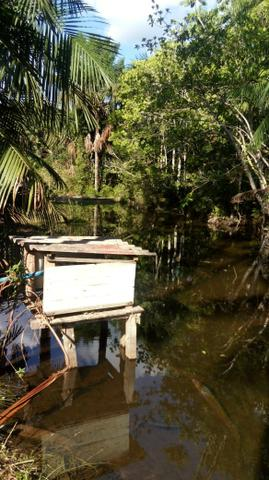 Sítio no Rio Preto da Eva - Foto 5