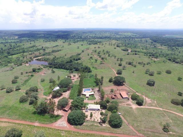 Fazenda de 216 alqueires 1.045,44 hectares- Miracema do Tocantins-TO - Foto 16