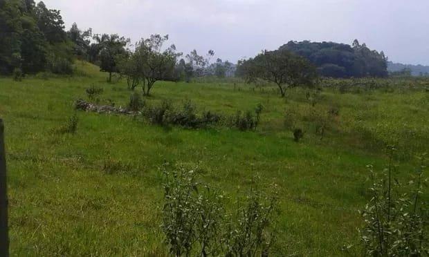 Belíssima fazenda em Cachoeiras de Macacu oportunidade!!!! - Foto 9