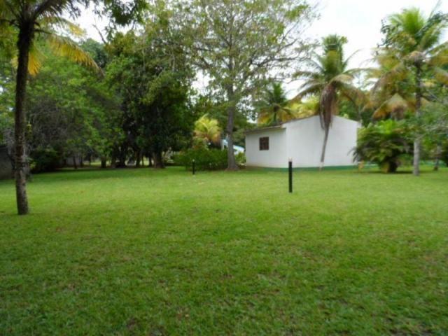 Chácara em Goiana - Tejucupapo por 3.000.000,00 à venda - Foto 8