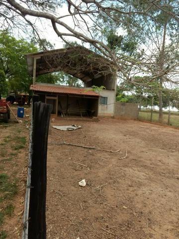 Fazenda de 216 alqueires 1.045,44 hectares- Miracema do Tocantins-TO - Foto 7