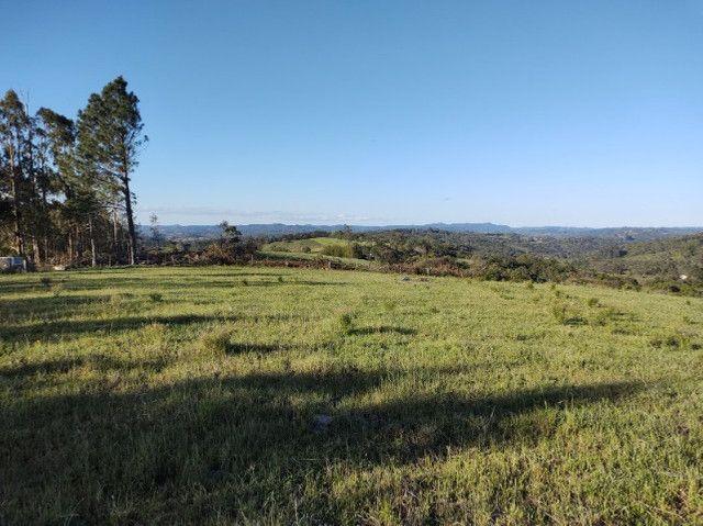Fazenda na Cascata - 75 ha - Pelotas - RS - Foto 5
