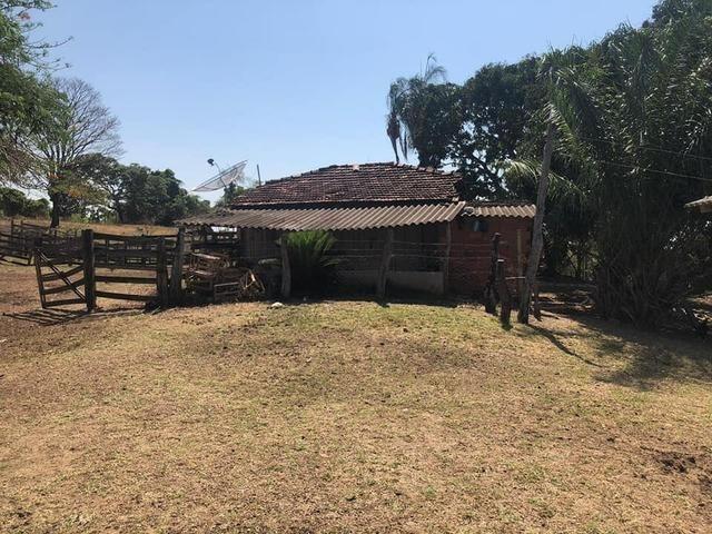 Fazenda a venda em Piracanjuba de 20 alqueires para Pecuária e lavoura - Foto 8