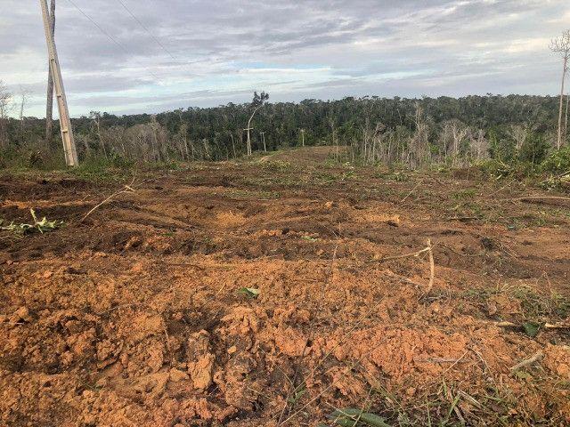 Vendo fazenda na Bahia com 100 hectares (1.000.000 m²) - Foto 5
