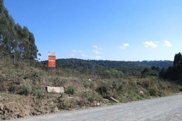 Terreno para Venda, Rio Negrinho / SC, bairro São Pedro