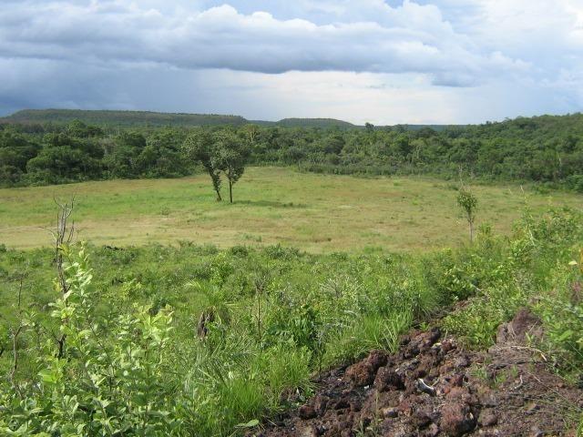 Almas-TO - Fazenda distante de Palmas 210 Km - Foto 8