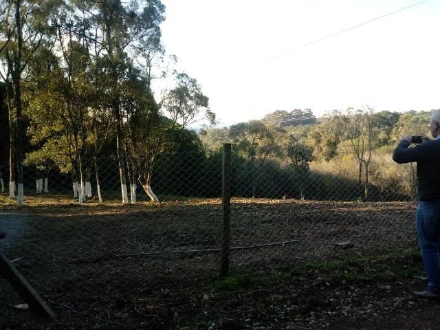 Excelente area para chacrinha com 4.675m² ( 85:00x 55:00 m) - Foto 10