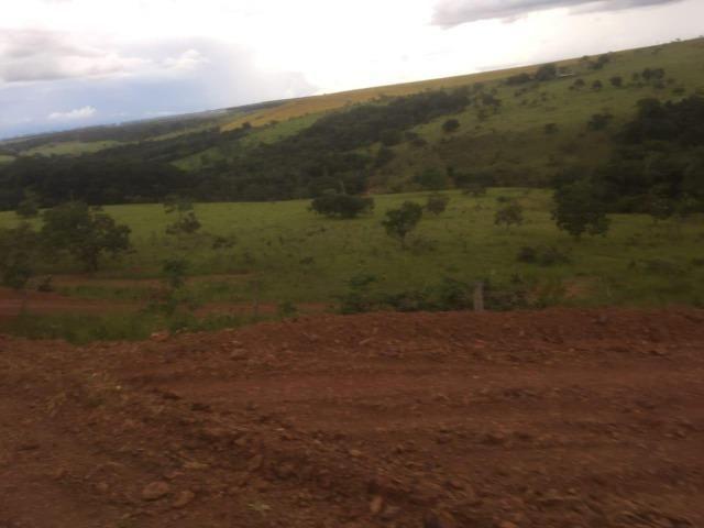4 Alqueires c/ Rio p/ Lotear, Haras, Lazer, Gado. 40 km Anápolis-GO - Foto 11