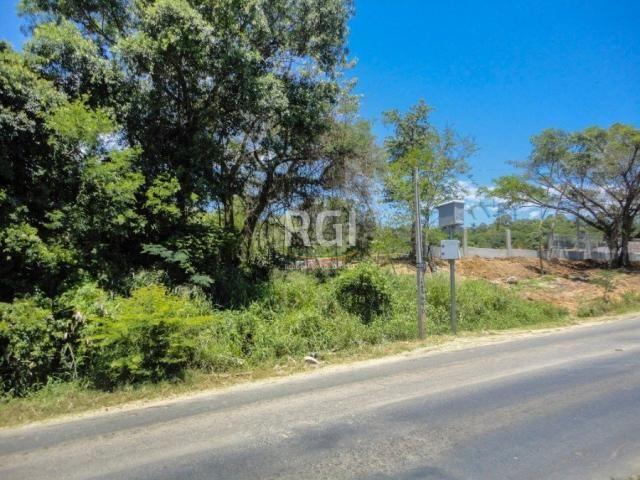 Terreno à venda em Morro santana, Porto alegre cod:CS36007063 - Foto 4