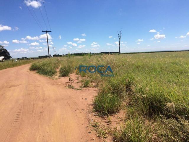 Rural - Não tem bairro - Foto 11