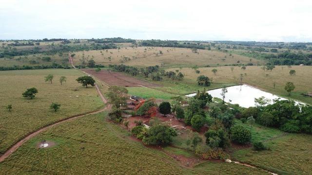 Fazenda plana e rica em água, 24 Alqueires (116.16 ha ) Bela Vista de Goias