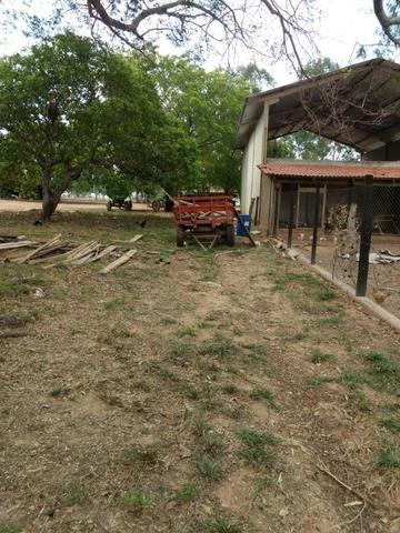 Fazenda de 216 alqueires 1.045,44 hectares- Miracema do Tocantins-TO - Foto 12