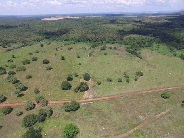 Fazenda de 216 alqueires 1.045,44 hectares- Miracema do Tocantins-TO - Foto 17