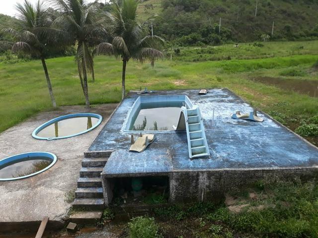 Lindo sítio em Mauá ( Guia de Pacobaíba) oportunidade!!! - Foto 9