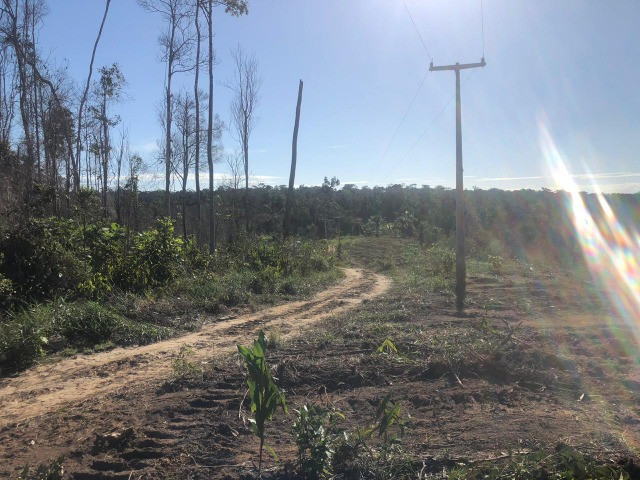 Vendo fazenda na Bahia com 100 hectares (1.000.000 m²) - Foto 4