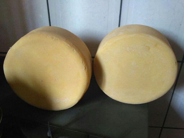 Queijos parmesão artesanal  - Foto 2