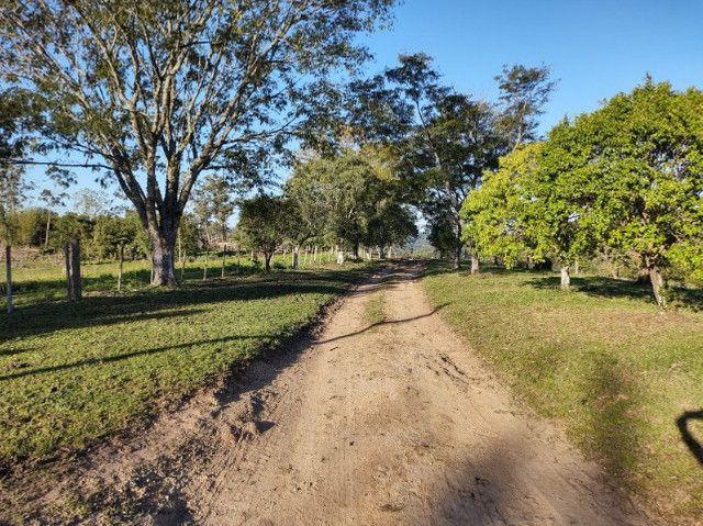 Fazenda na Cascata - 75 ha - Pelotas - RS - Foto 10