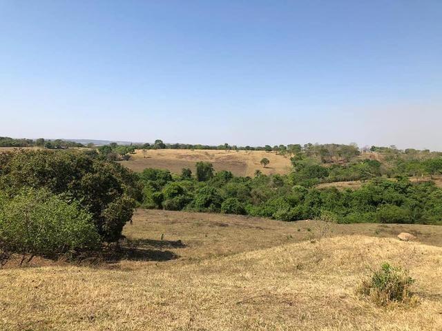 Fazenda a venda em Piracanjuba de 20 alqueires para Pecuária e lavoura - Foto 11