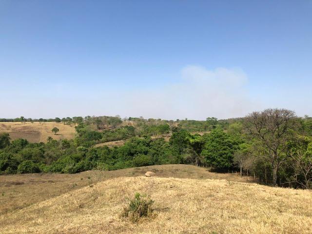 Fazenda a venda em Piracanjuba de 20 alqueires para Pecuária e lavoura - Foto 17