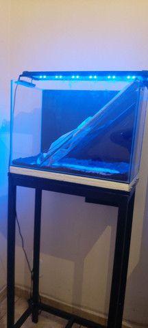 Aquario completo 50x27x36 vidro novo.