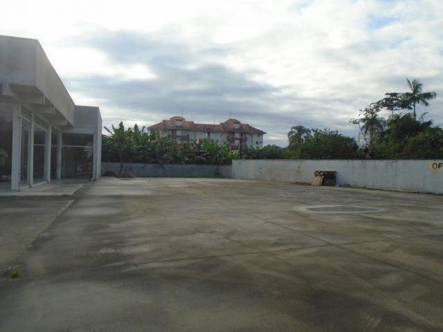 Terreno para alugar em Santo antonio, Joinville cod:08135.002 - Foto 3