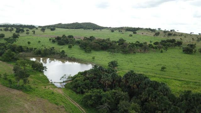 Oportunidade Extra Fazenda 100 Alqueires ou 484 Hectares Aragoiânia