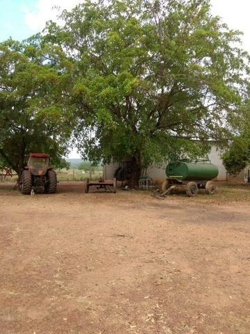 Fazenda de 216 alqueires 1.045,44 hectares- Miracema do Tocantins-TO - Foto 9