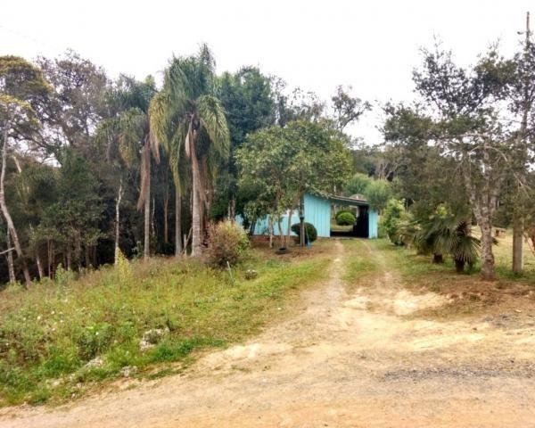 Chácara à venda em Campo lençol, Rio negrinho cod:CH00016 - Foto 5