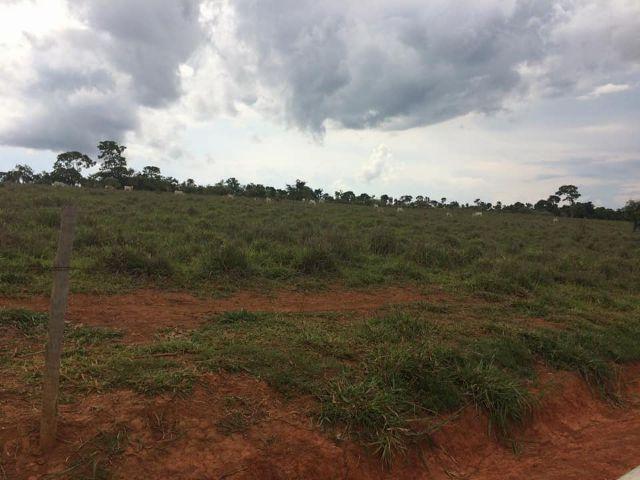 Fazenda rural à venda, Residencial Náutico, Três Marias. - Foto 17