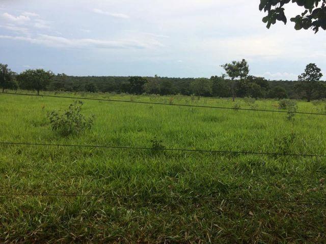 Fazenda rural à venda, Residencial Náutico, Três Marias. - Foto 2