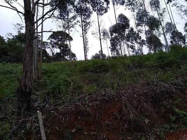 Chácaras Cariacica 15 mil metros - Foto 6