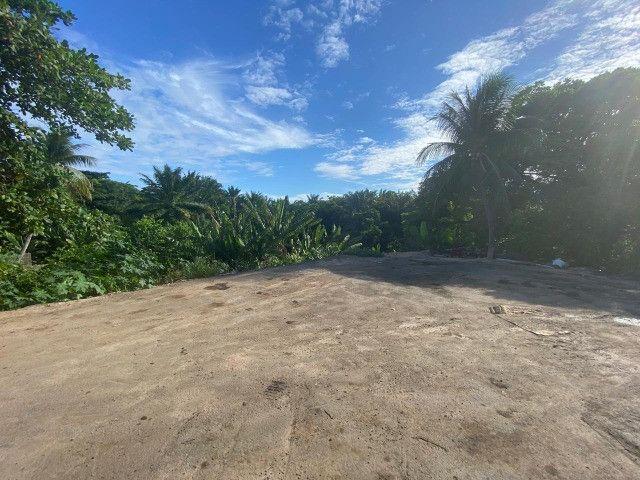 Vendo ótimo Terreno bem localizado no Bairro de Tejipió / Recife - Foto 6