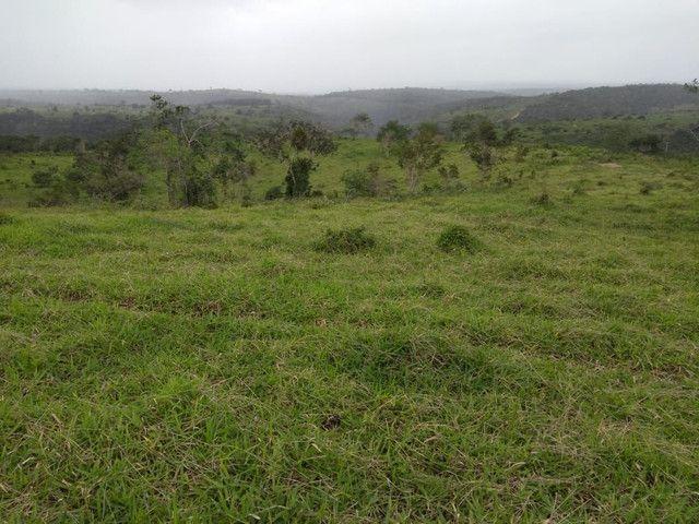 Terra ,Fazenda ,sítio, chácara , e lote Urbano - Foto 4