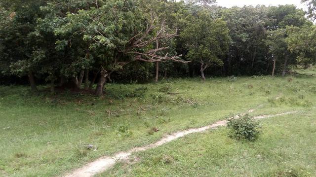 Fazenda 10 km da cidade Cuiaba - pedra 90 - Foto 11