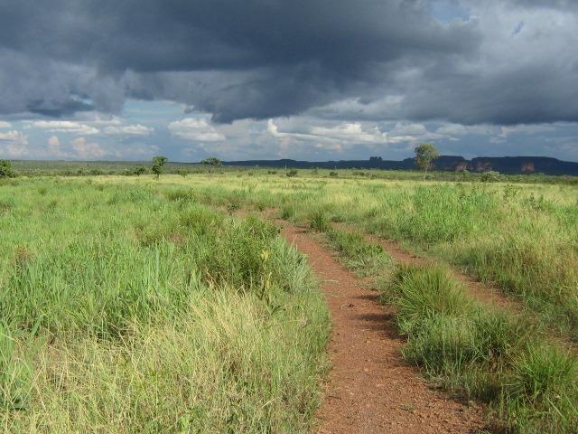 Almas-TO - Fazenda distante de Palmas 210 Km - Foto 2