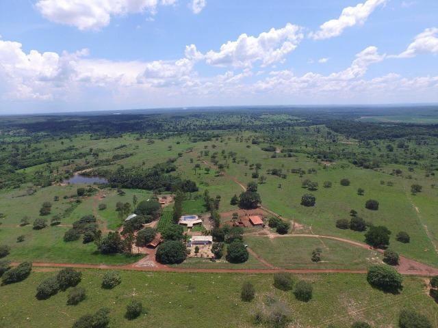 Fazenda de 216 alqueires 1.045,44 hectares- Miracema do Tocantins-TO - Foto 8