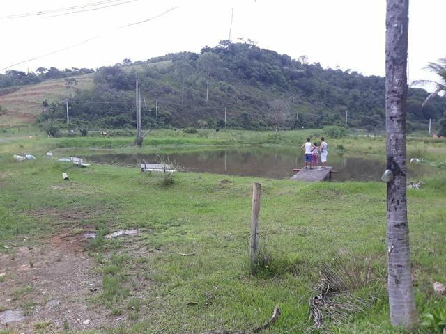 Lindo sítio em Mauá ( Guia de Pacobaíba) oportunidade!!! - Foto 14