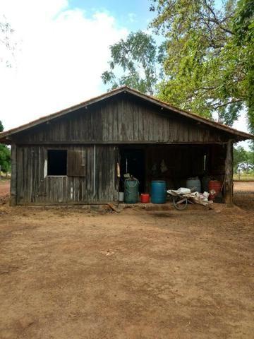 Fazenda de 216 alqueires 1.045,44 hectares- Miracema do Tocantins-TO - Foto 4