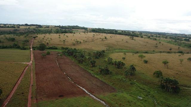 Fazenda plana e rica em água, 24 Alqueires (116.16 ha ) Bela Vista de Goias - Foto 16