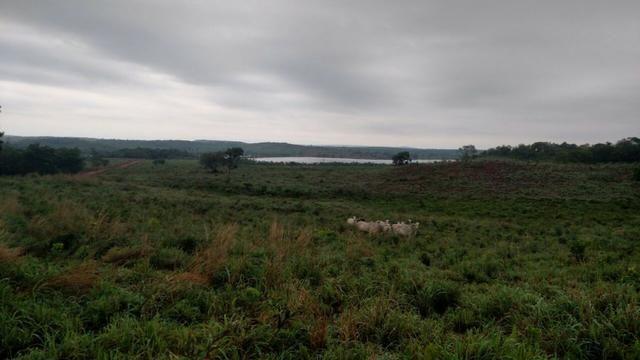 Fazenda beira do lago a melhor da região - Foto 17