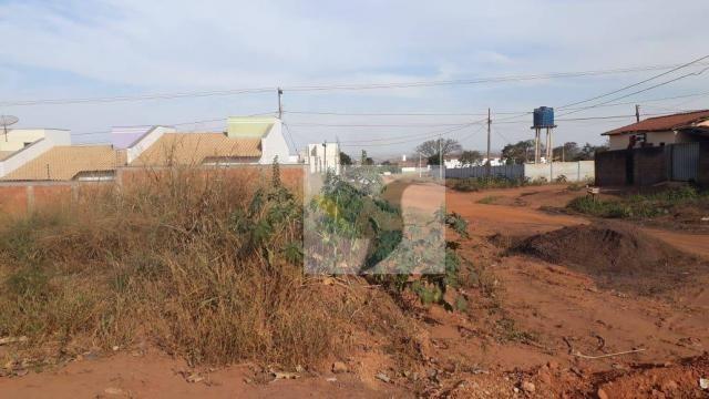 Terreno à venda, 1125 m² por r$ 355.000 - jardim belo horizonte - Foto 2