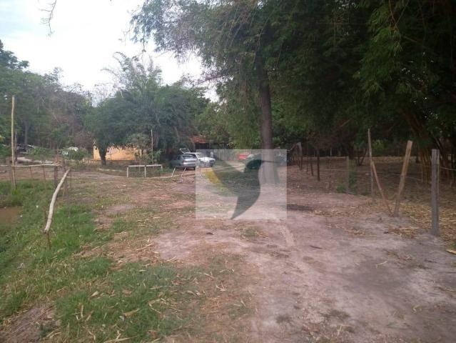 Chácara com 2 dormitórios à venda, 13200 m² por r$ 250.000 - jardim rivera - Foto 8